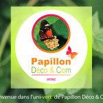 papillon deco & com